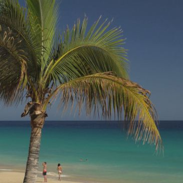 Fuerteventura in 4K