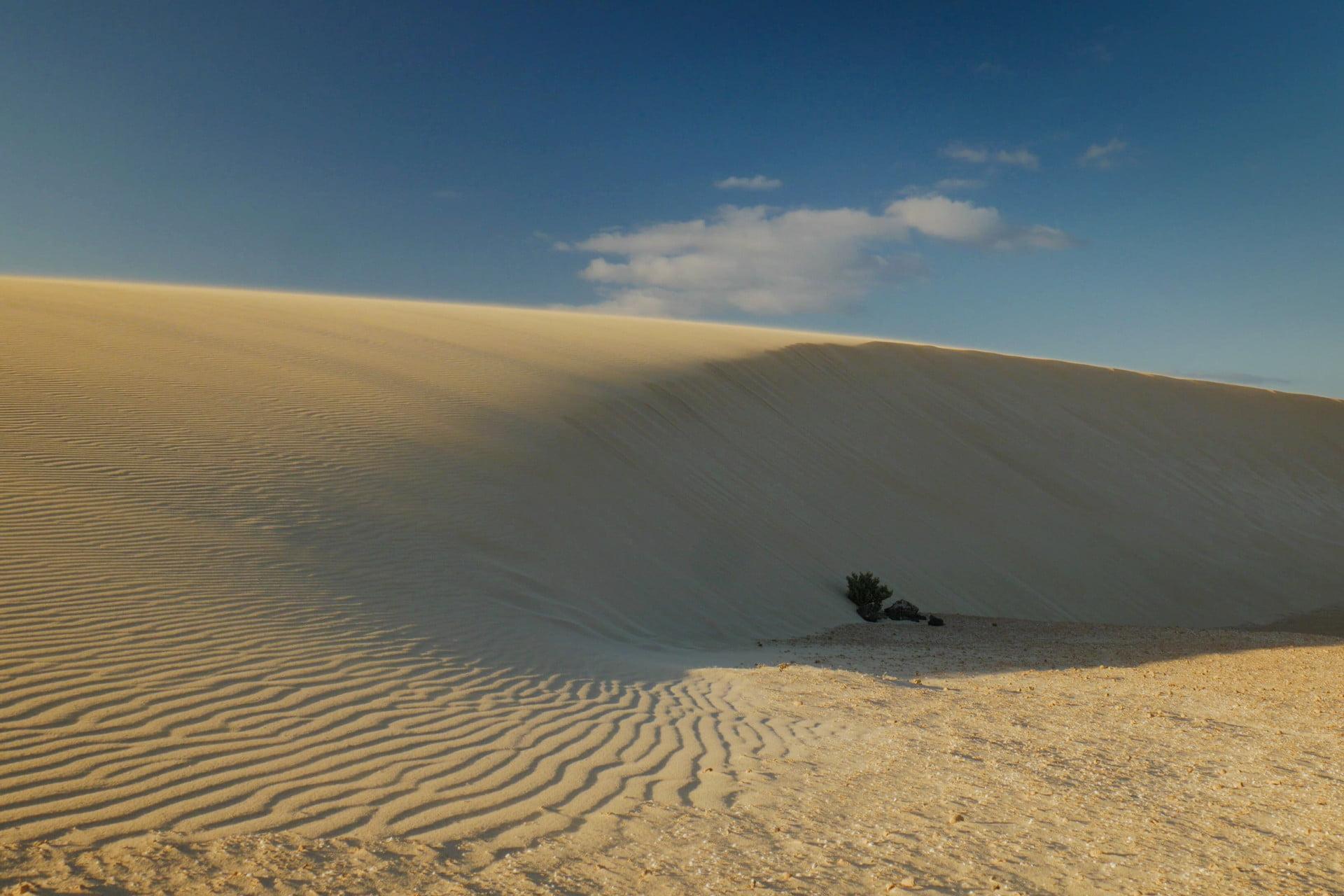 Sand Dune in the Parque Natural de Corralejo