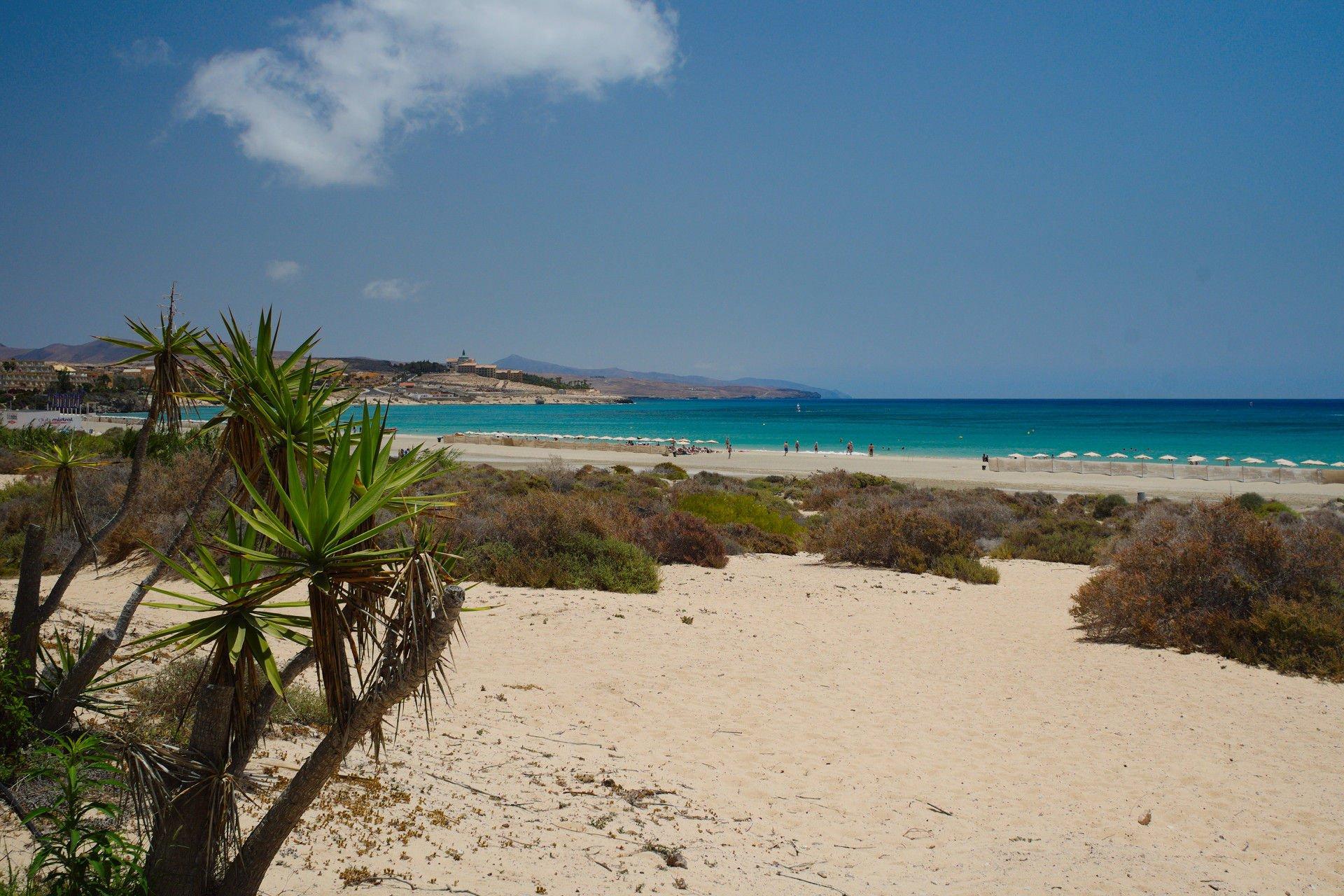 Costa Calma Beach, Fuerteventura