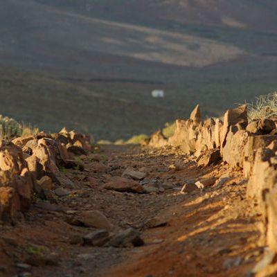 Fuerteventura Trails