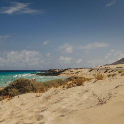 Beach in the Parque Natural de Corralejo